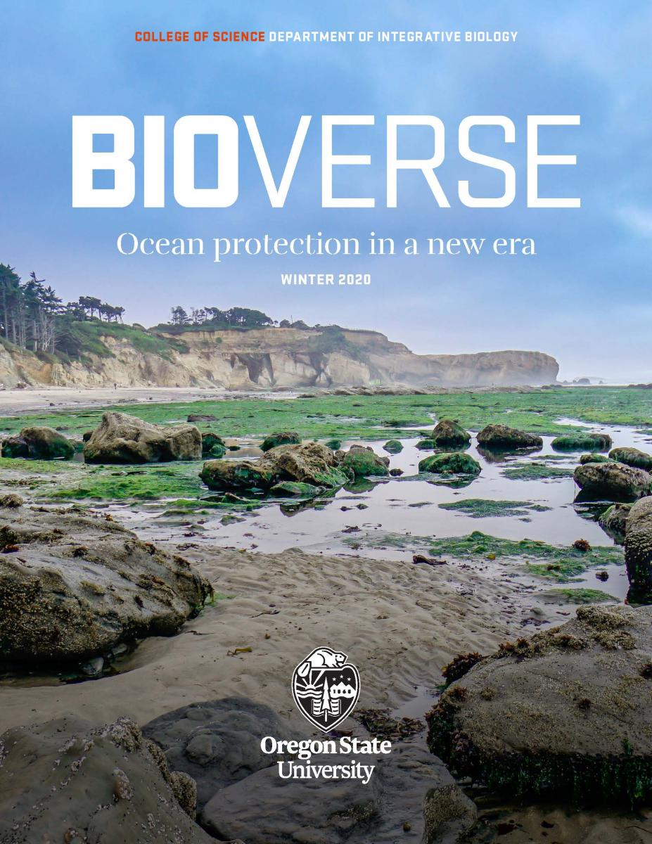 cover of BioVerse magazine