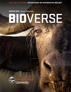 water buffalo headshot on cover of BioVerse newsletter