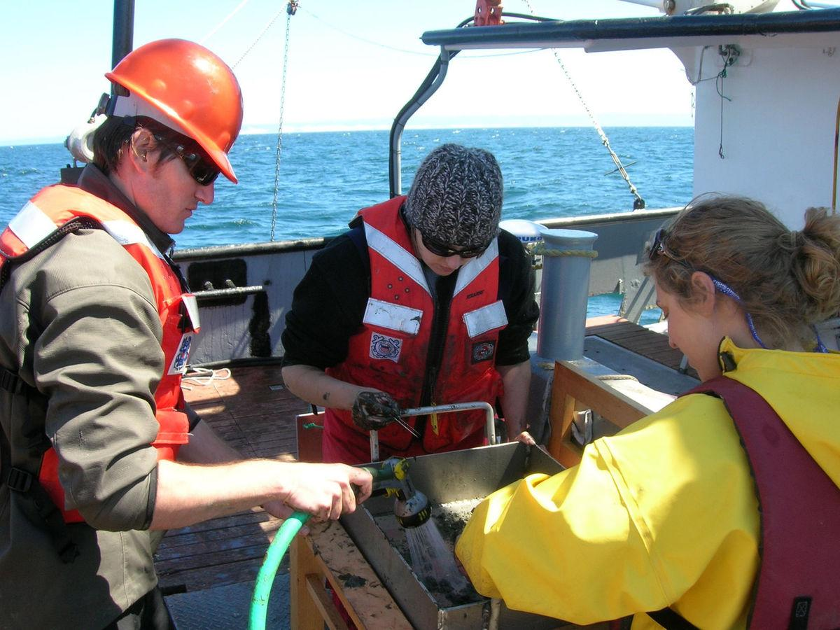 Seafloor Survey Done For Potential Offshore Renewable Energy