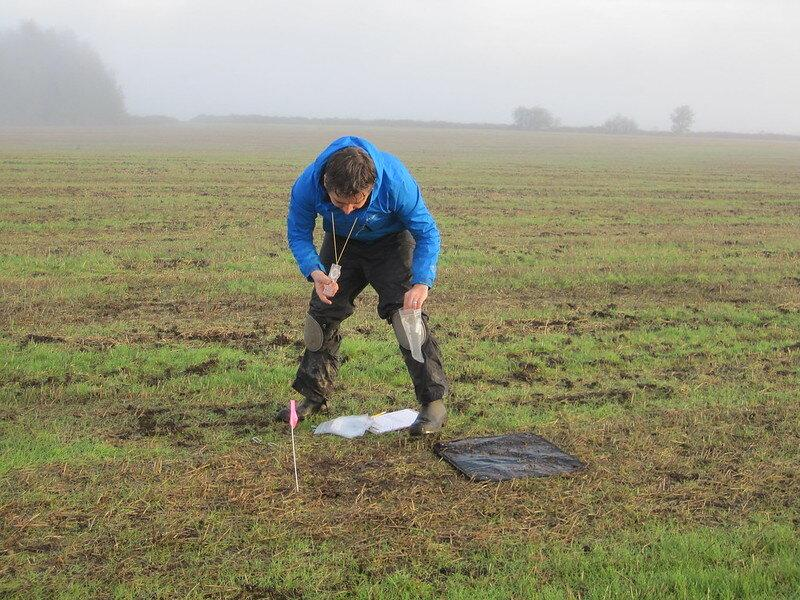 researcher gathering nematodes in the field
